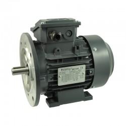 MOTOR T3C355M1-6 220CV 160KW 1000RPM 400/690V 50HZ B35 IE3