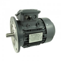 MOTOR T3CR280M-6 75CV 55KW 1000RPM 400/690V 50HZ B5 IE3