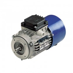 MOTOR BM63A2 0,25CV 0,18KW 3000RPM 230/400V 50HZ B14