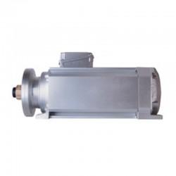 MOTOR SBE107 B/2 C 13,2KW 18CV 2880RPM 400/690V 50HZ AL1 DX