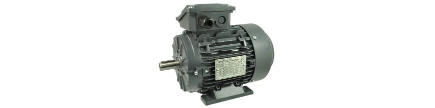 2 Polos - 3000 rpm